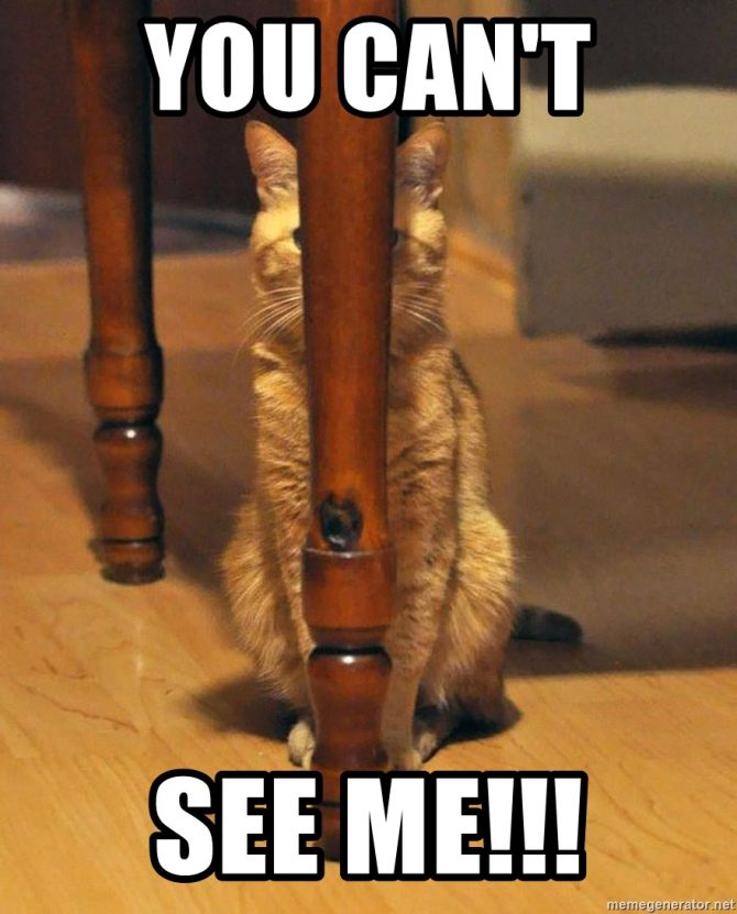 You can't see me